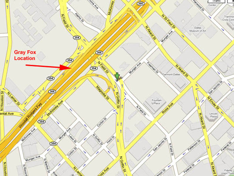 I left work just before sunset on Monday, March 12, 2007, and on my way up the entrance ramp I noticed a Gray Fox laying in a small grassy area that is located between the on-ramp and the public parking area. See the map above for the exact location of the observation.