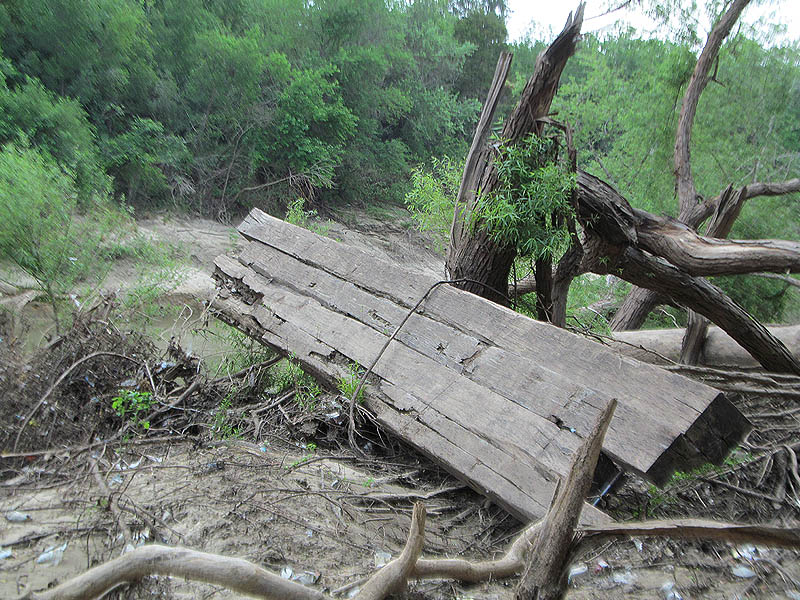 This picture was taken about 600 yards/meters further down stream.  These timbers were almost certainly once a part of Lock and Dam Number One.