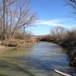 Journal - Hiking the Elm Fork
