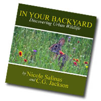 In Your Backyard Promotional