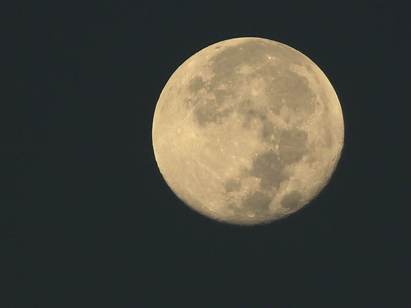 When the sky begins to lighten with dawn the details on the moon's surface become visible.