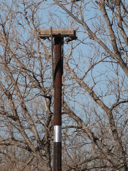 An Osprey nesting platform.
