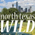 Announcement - DFW Urban Wildlife in the News!