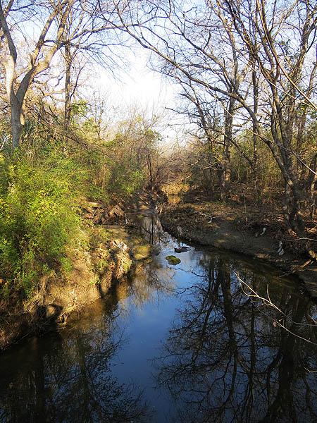 Meandering Prairie Creek.