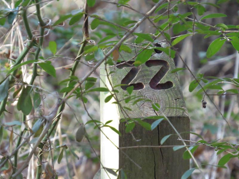 A trail marker.