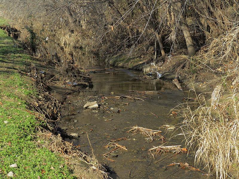 Rerouted Prairie Creek.