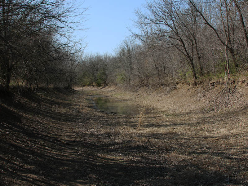 A mostly dry creek bed.