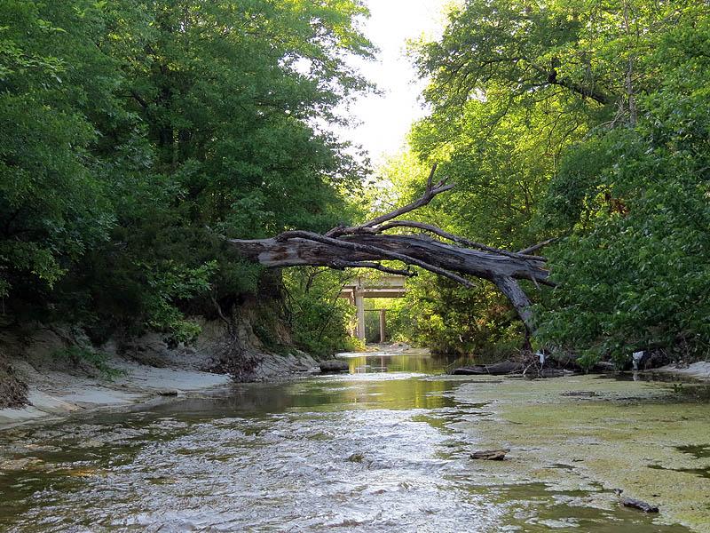 Rowlett Creek.
