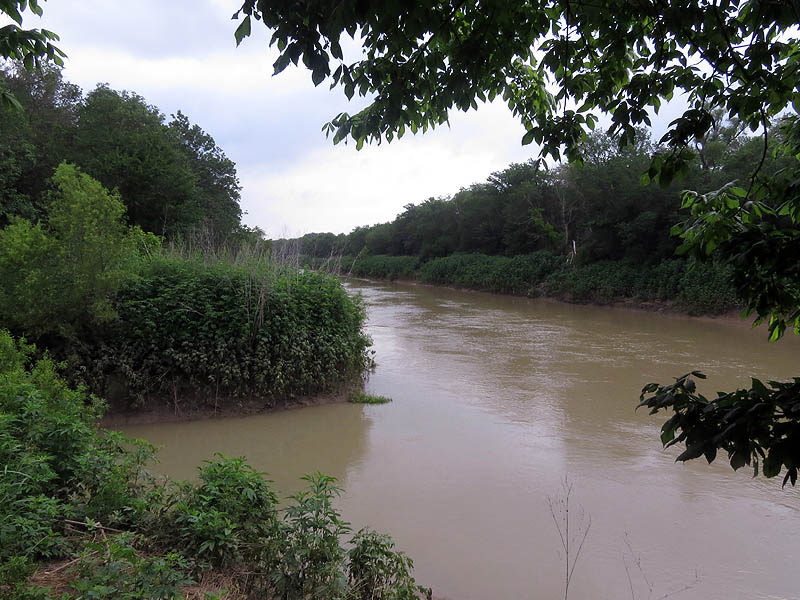 The confluence of Five Mile Creek and the Trinity River.