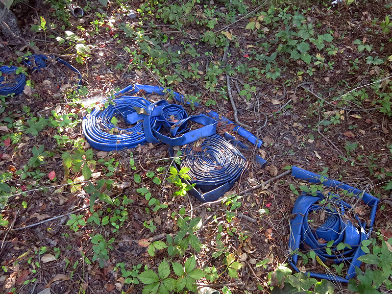 More hose was found in the clearing.