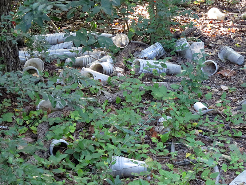Dozens of solo cups littering the Bruton Bottoms.