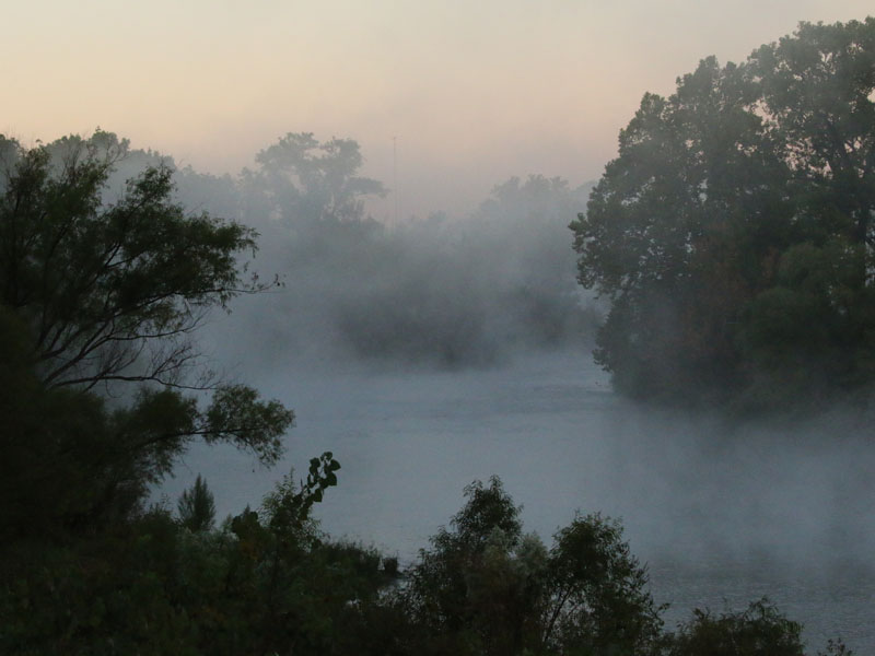 River fog atmospherics.