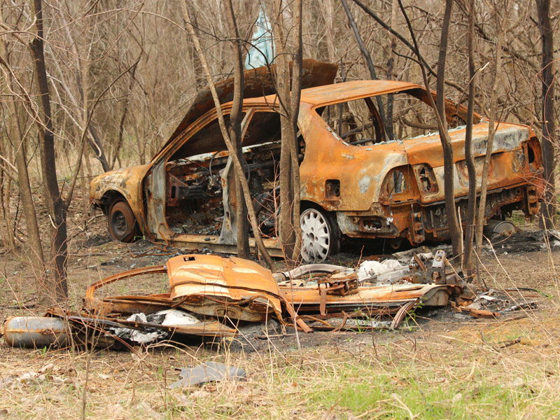 A stolen car burned to a crisp in the McCommas Bluff Preserve.