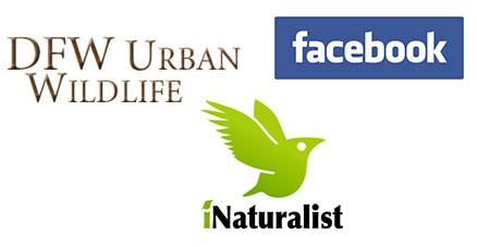 DFWUW-Facebook-iNaturalist