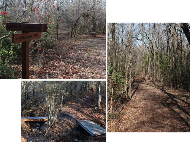 The trails of Coppell Nature Park.