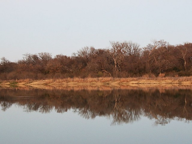 The Elm Fork Bottomlands.