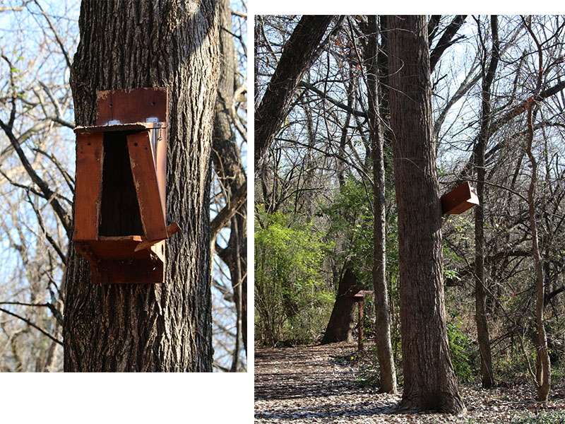 Nesting boxes in disrepair are eyesores in a natural environment.
