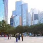 The Wilds of Downtown Dallas