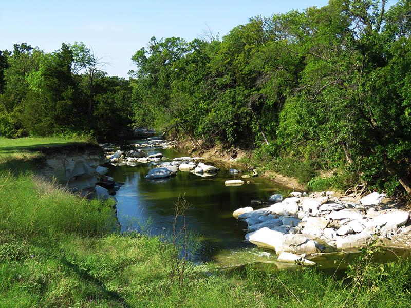 white rock creek end to end dfw urban wildlife